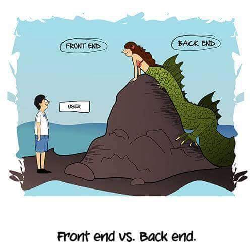 Front-End vs Back-End
